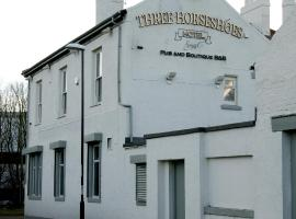 The Three Horseshoes Hotel, Sunderland