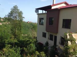 Arsin Villa, Arsin