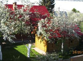 Cottage on Yagodnaya 140, Kazan