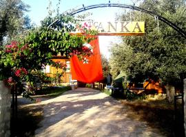 DatcAnka Ahsap & Kutuk Evler, Mesudiye