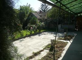 Guest House Tiszhaz, Senta