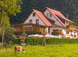 Gasthaus - Pension Hohberg, Durbach