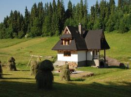 , Tatrų Bukovina