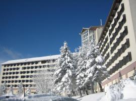 Ringberg Hotel, Suhl