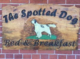 Spotted Dog B and B, Madoc