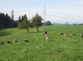 Ferienwohnung Huber, Opfenbach