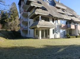 Appartment Saig, Lenzkirch