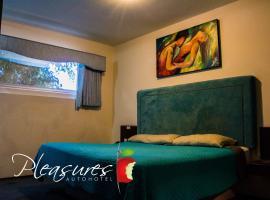 Auto Hotel Pleasures, Celaya