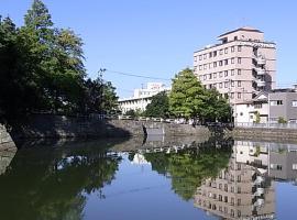Hotel Fukui Castle