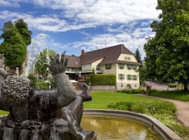 Hotel Traube, Ofenburgas
