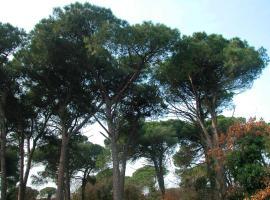 Ariston Vacanze, Marina di Ravenna