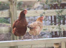 the hay barn @ hay-on-wye, Bredwardine
