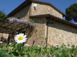 Podere Monticchio, 브루파