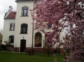 Villa Liduška, Bechyně