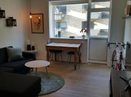 Cozy apartment in Nørrebro, Copenhagen