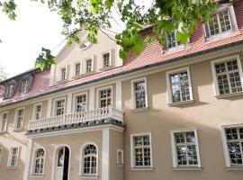 Pałac Brzezina, Brzezina