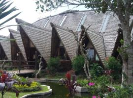 Bali Eco Village, Plaga