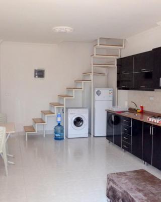 Apartment Ulas