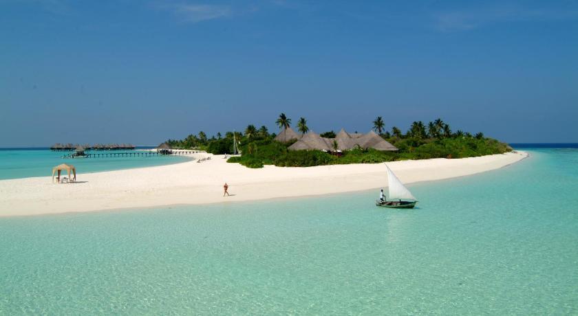 the white beach coco palm maldives