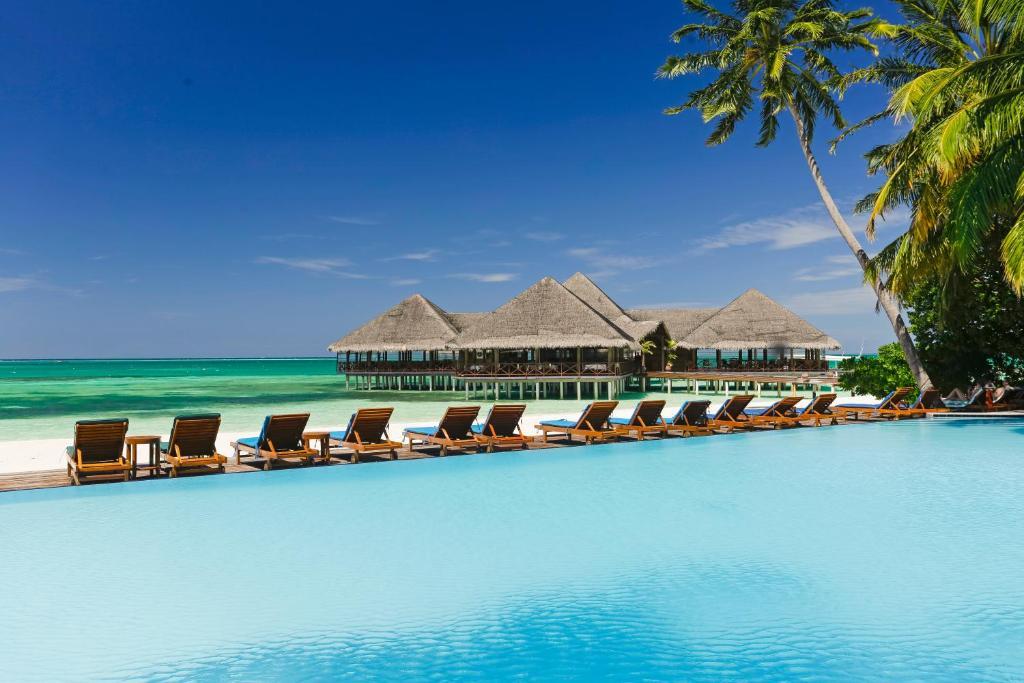 Medhufushi Island Resort - плавательный бассейн и пляжный бар