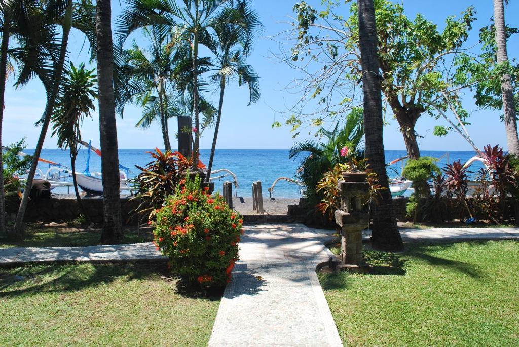 Jardin de l'établissement Coral View Villas
