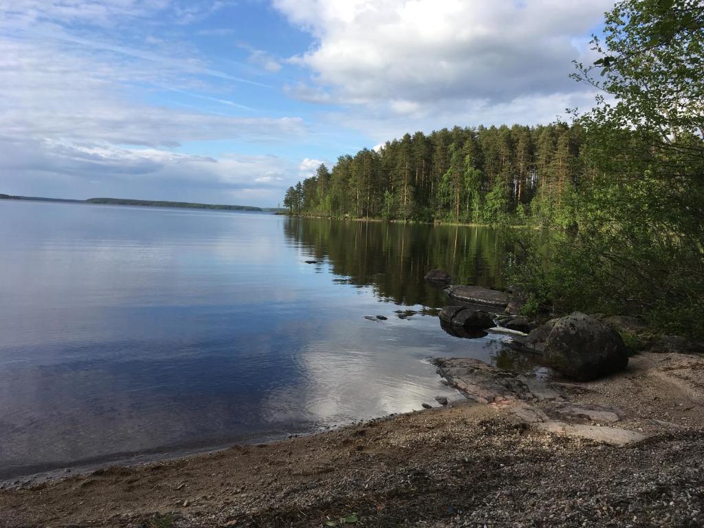 Озеро щукинское приозерский район рыбалка