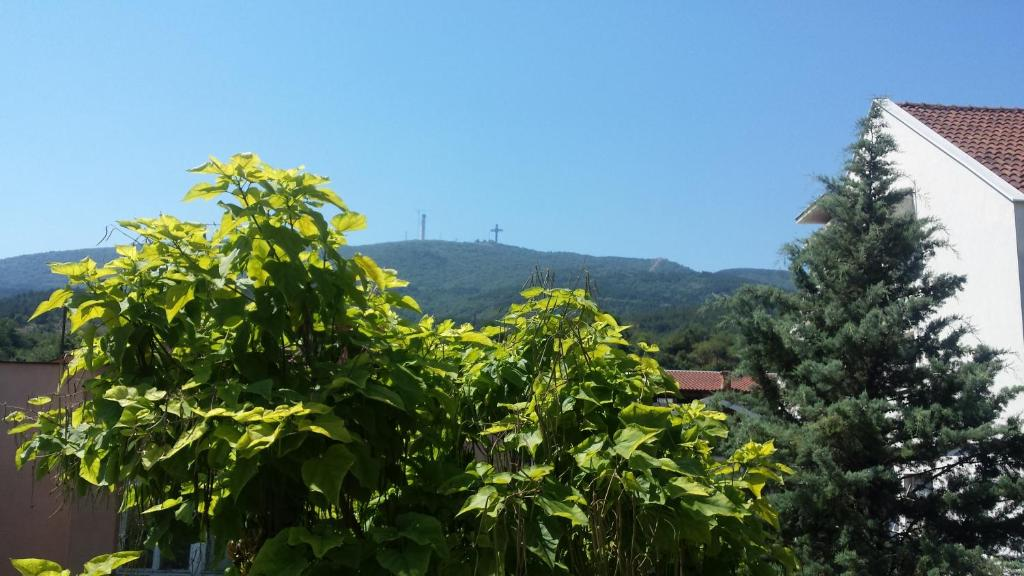 Sunny garden, Skopje – Updated 2018 Prices