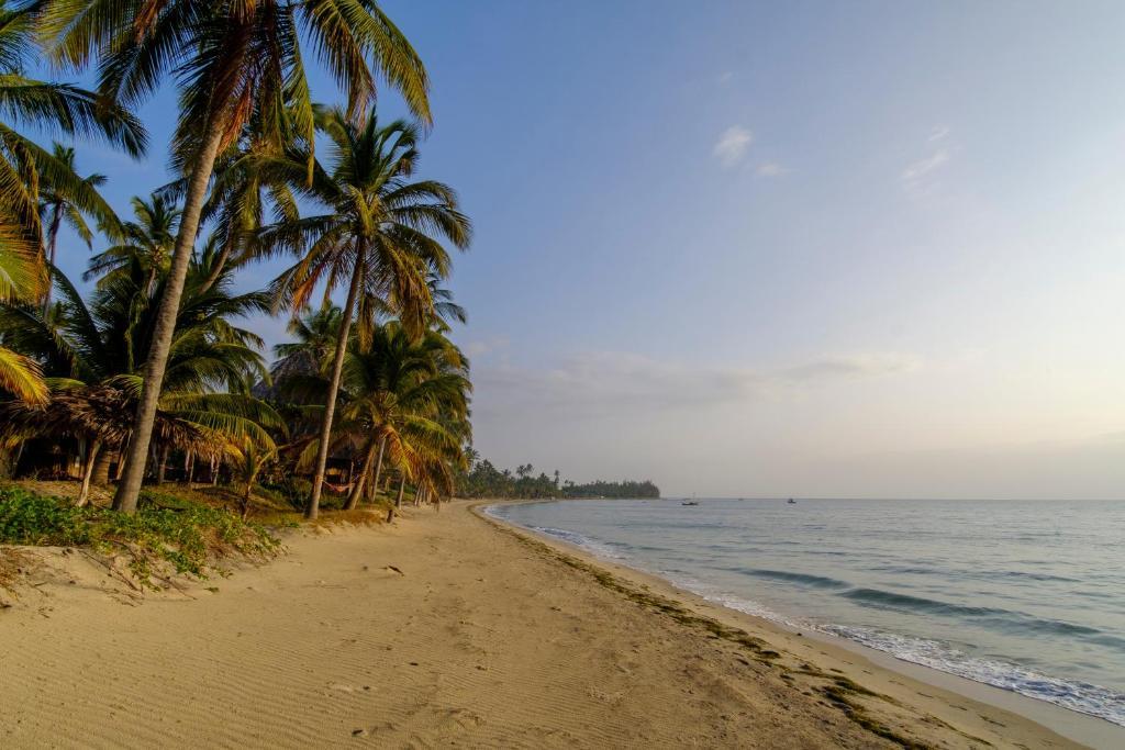 The Tides Lodge Pangani Tanzania Booking