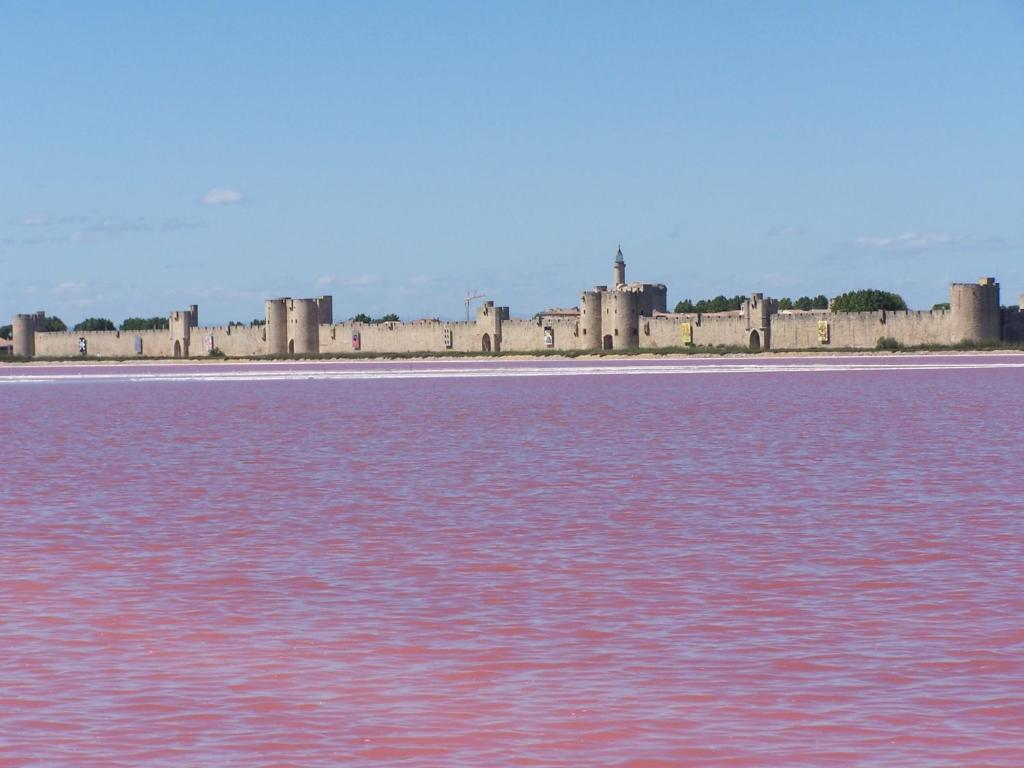 Image result for aigues mortes