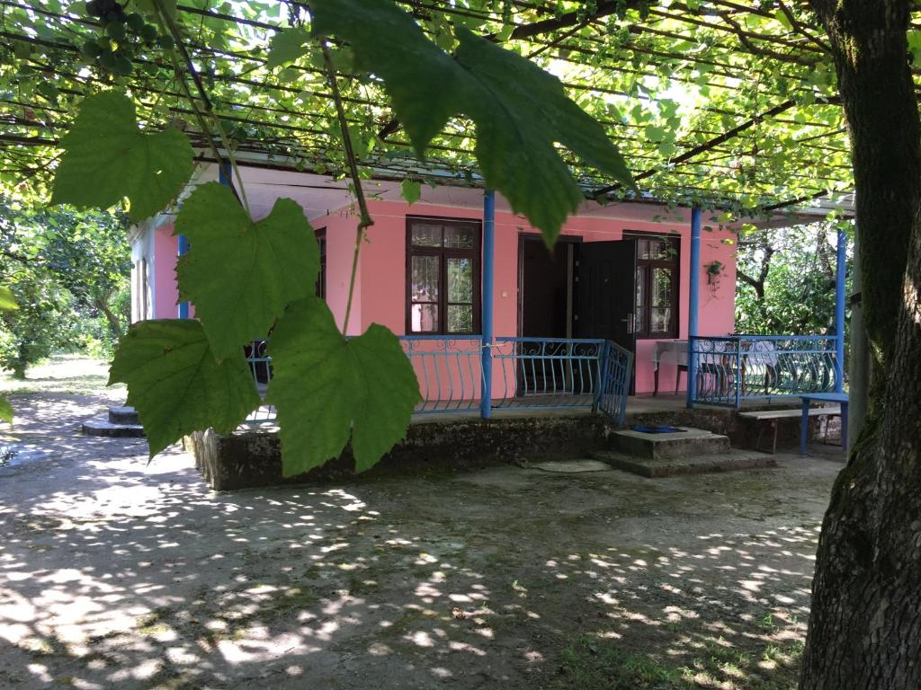 Holidays with private accommodation in Abkhazia: reviews and photos of tourists 84