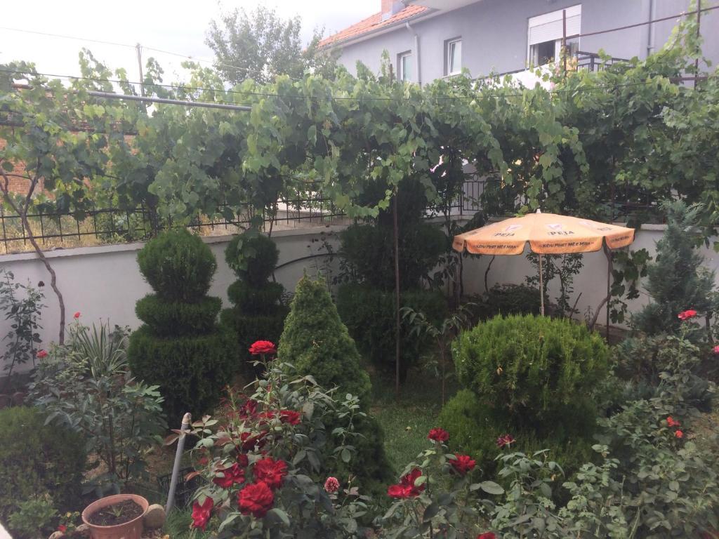 A garden outside Vila Ridvani