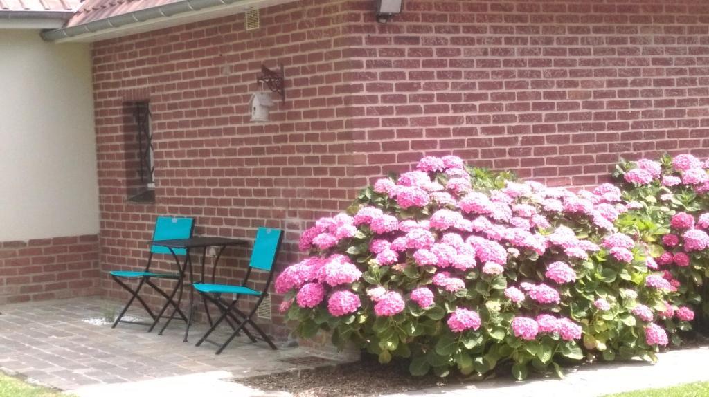 maison d'hôtes chambre d'hotes les hortensias (france rang-du