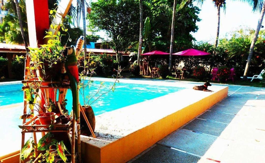 Hotel El Jardin Reserve Now Gallery Image Of This Property