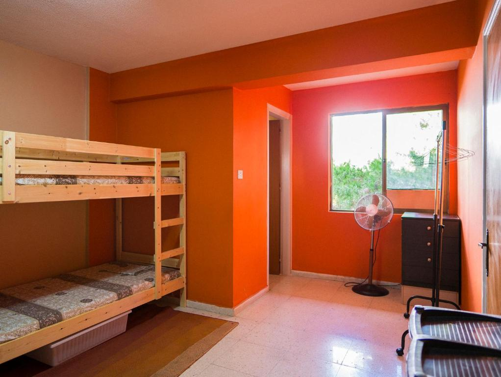 amateure hostel