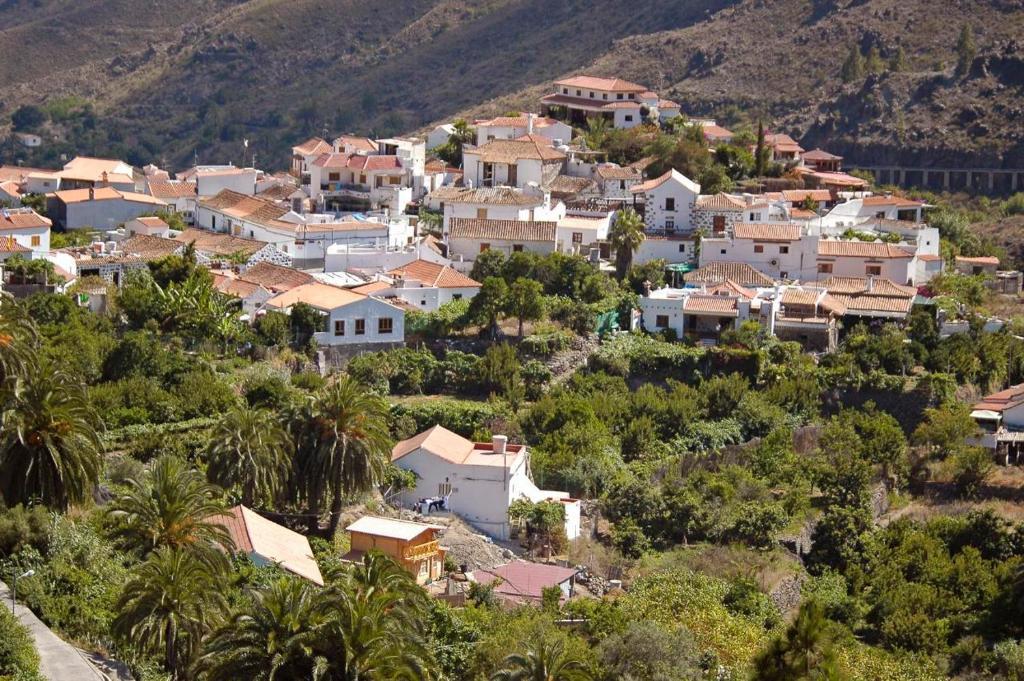 Villa Pino Fataga Precios Actualizados 2019