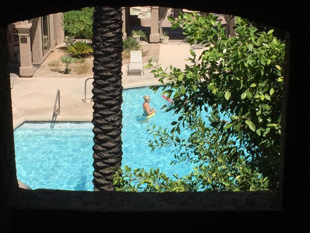 Apartments In Taliesin West Arizona