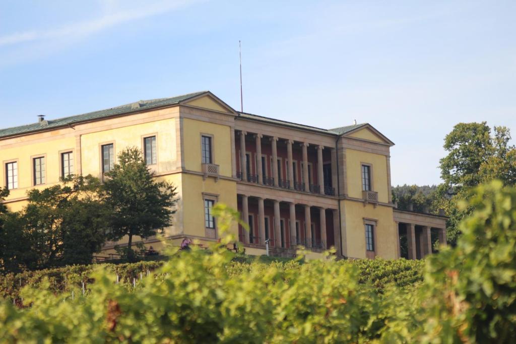 Apartment Ferienwohnung Liesel Rhodt Unter Rietburg Germany