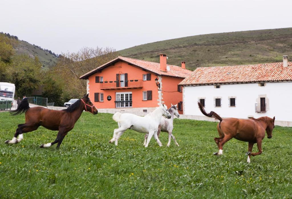 hotels with  charm in navarra provincia 45