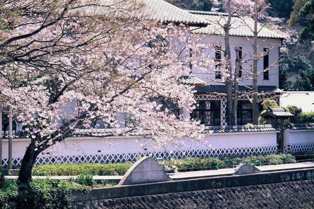 ポイント3.松崎町の美しい景観