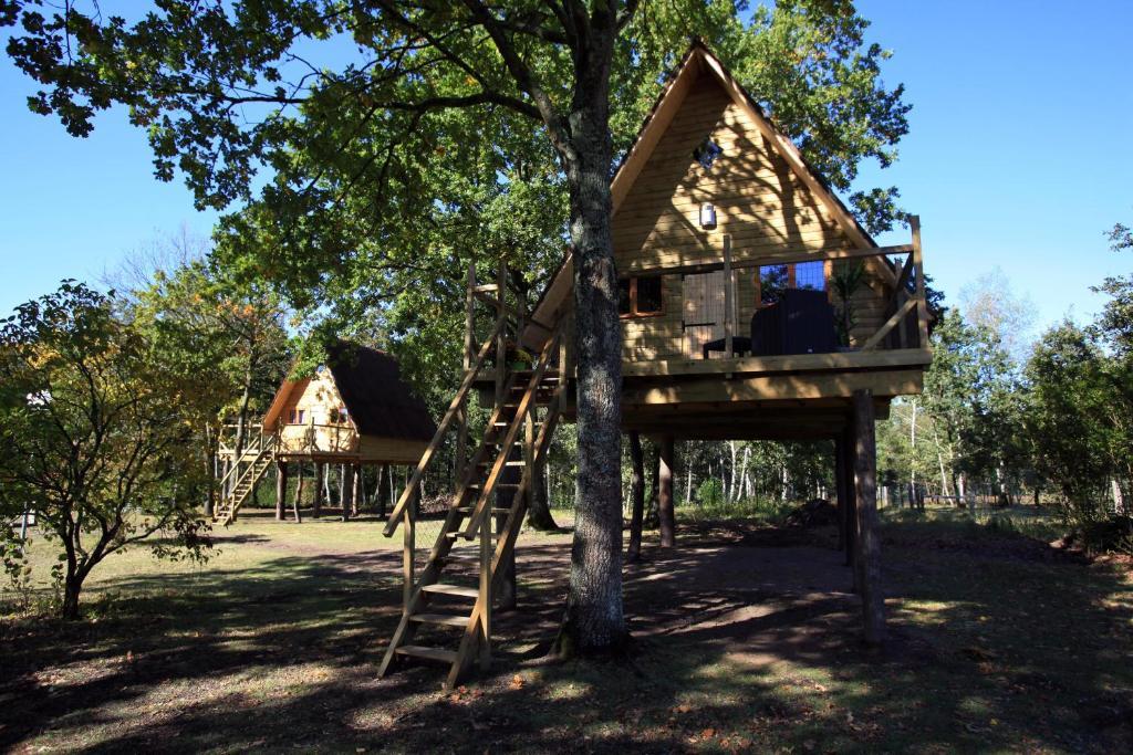 cabane dans les arbres picardie