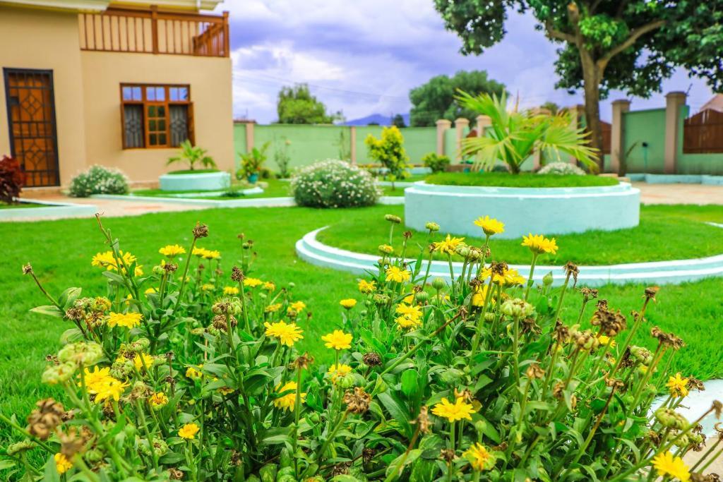 A garden outside Tesha Home