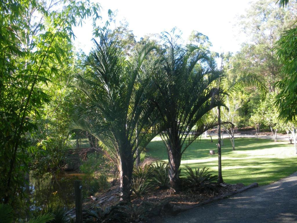 Are not nudist resorts south australia