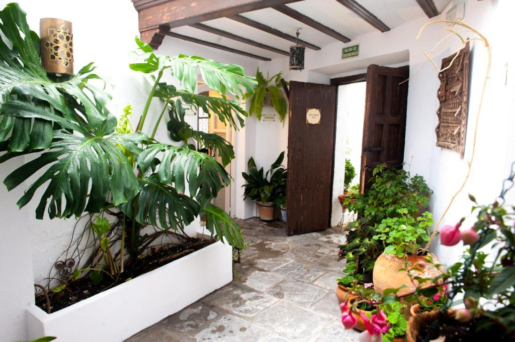 boutique hotels cadiz provinz  158