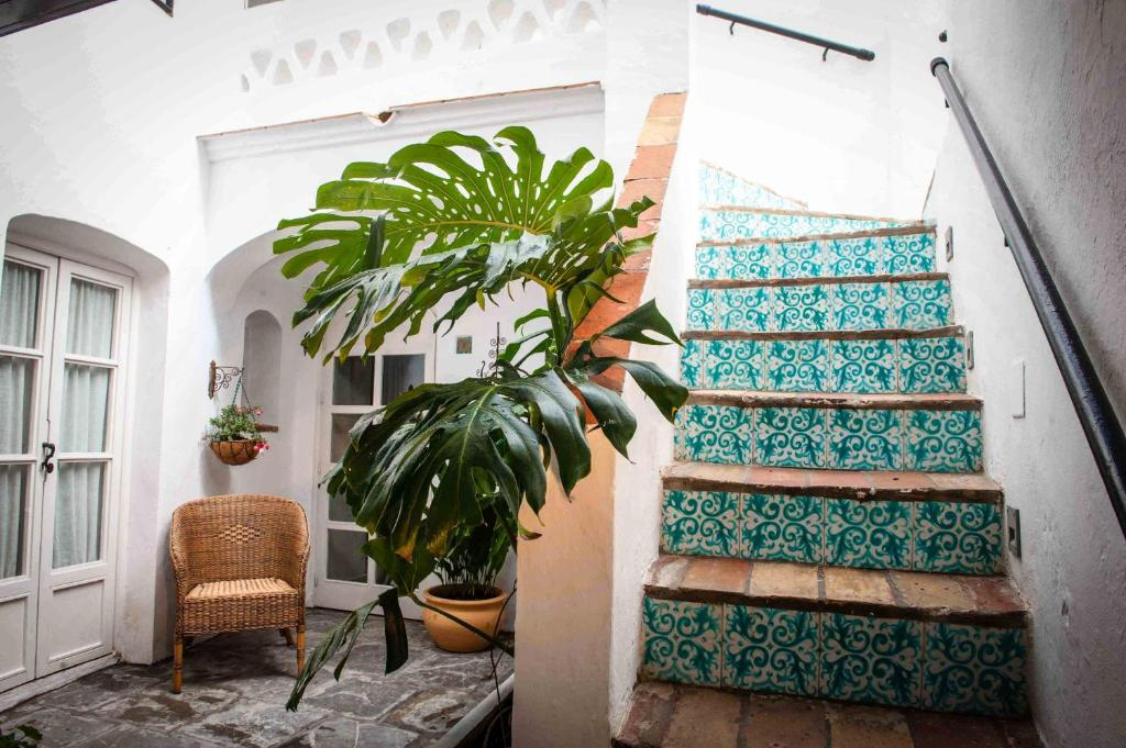 boutique hotels in cádiz  43