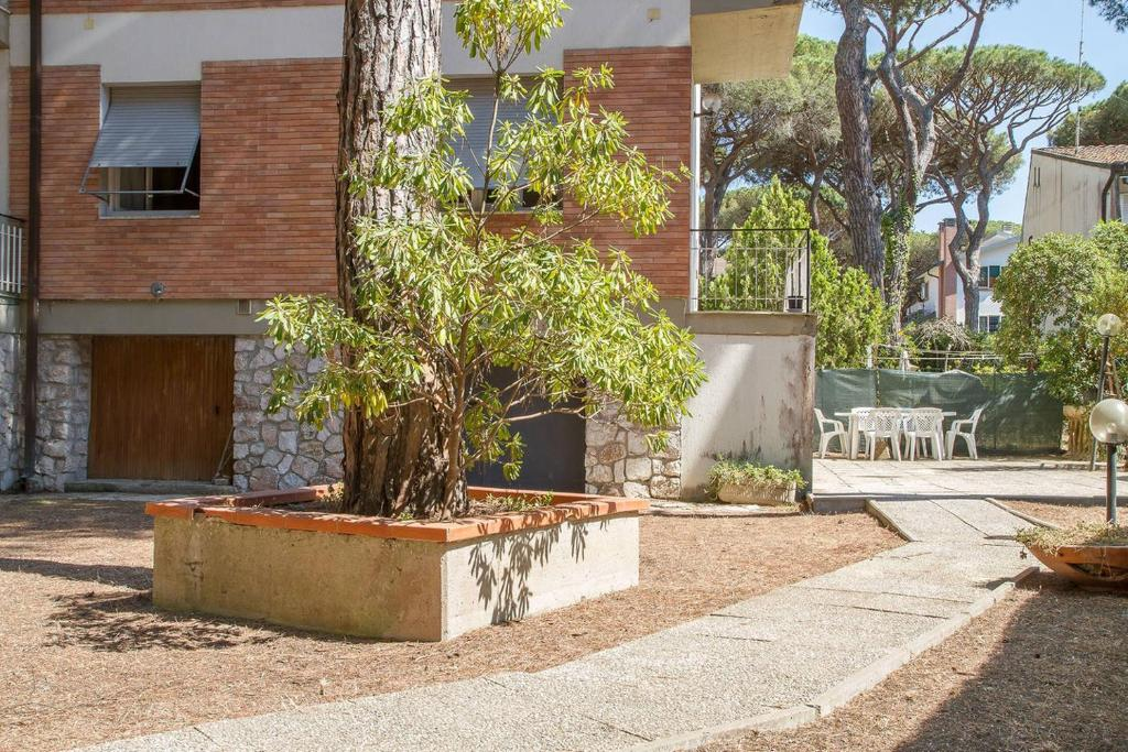 Apartment Holiday nest large garden near the sea Marina di