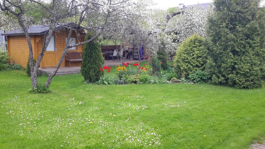 A garden outside Kaare Guesthouse
