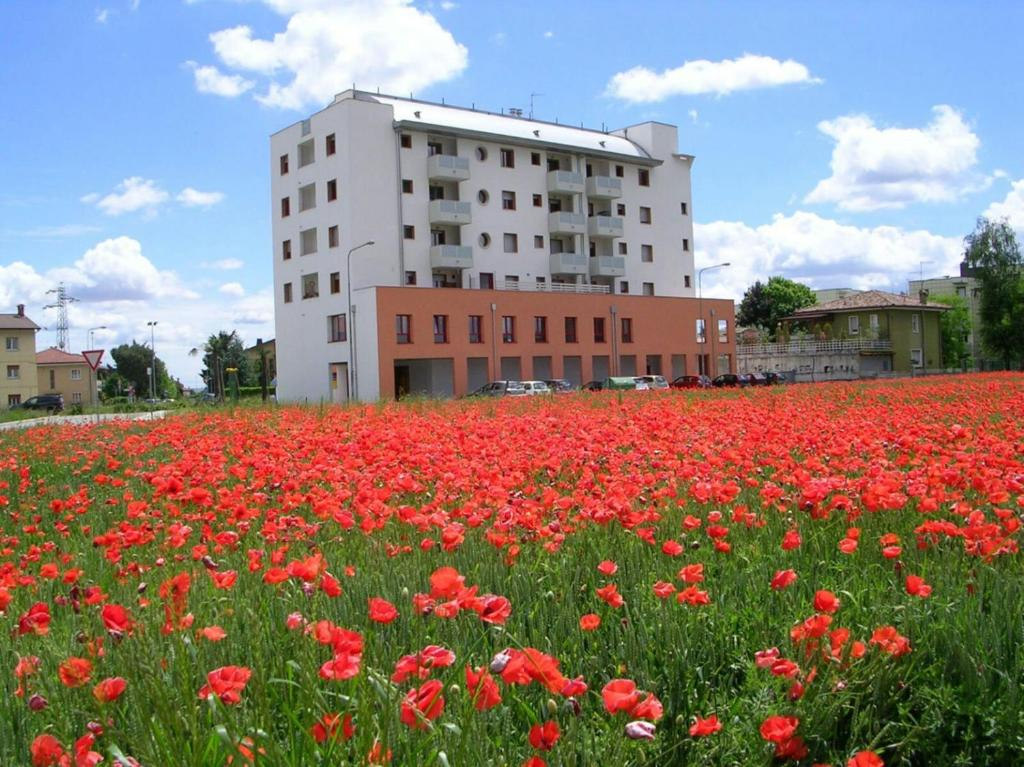 Ufficio Verde Pubblico Udine : Nuove costruzioni udine appartamenti case uffici in costruzione