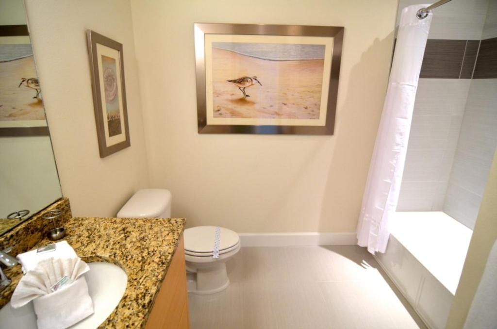 Apartments In Black Jack Island Florida
