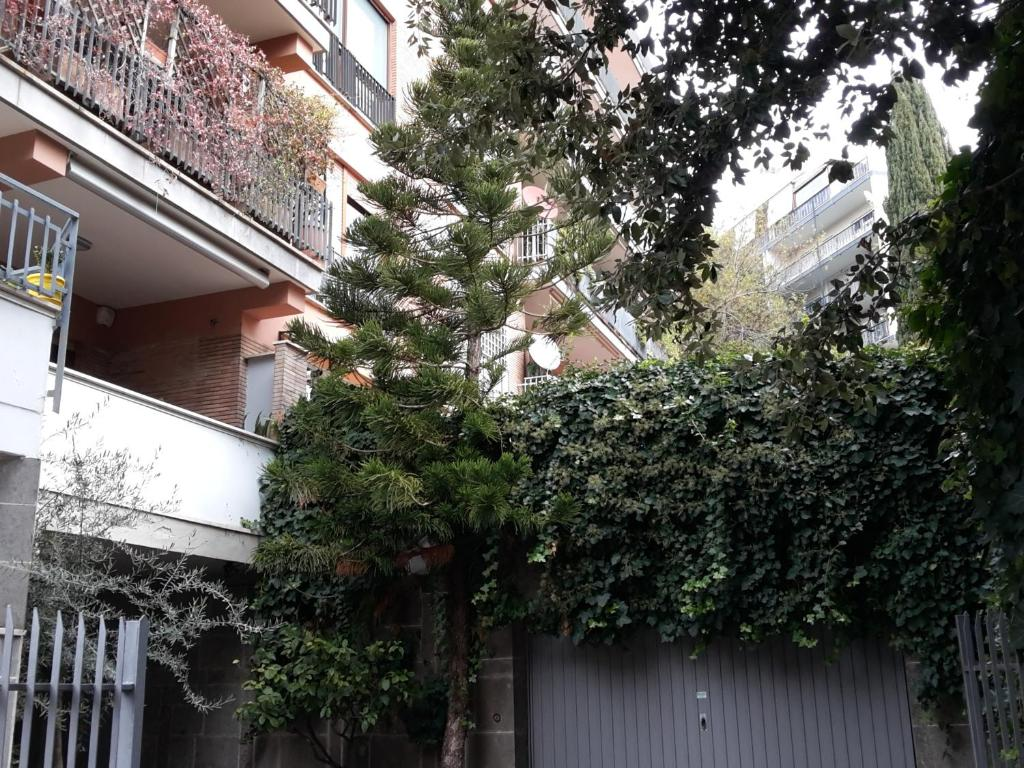 Apartment La Terrazza, Rome, Italy - Booking.com
