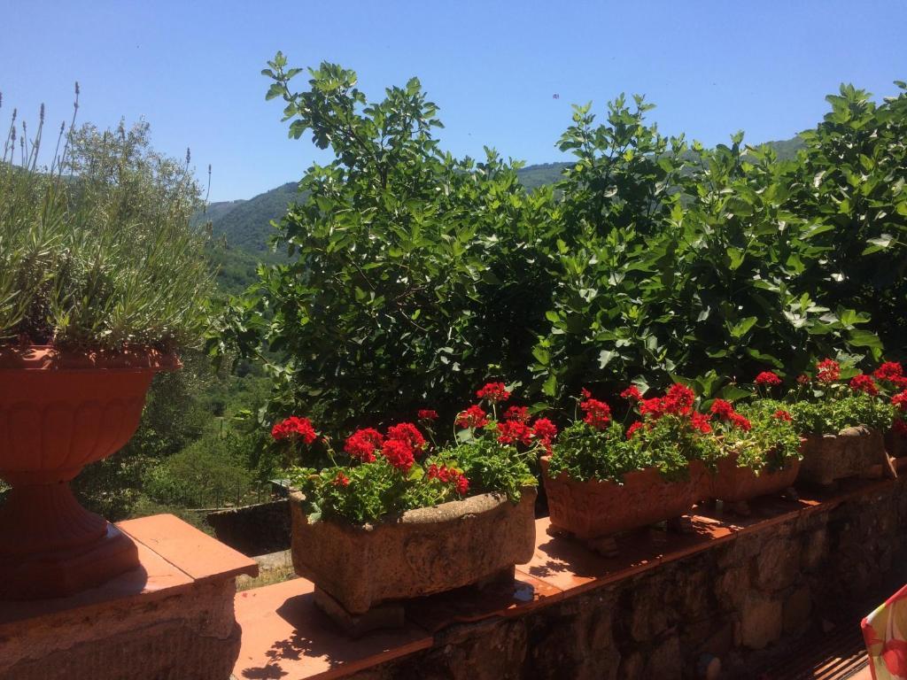 Vakantiehuis Casa Nicola (Italië Pistoia) - Booking.com